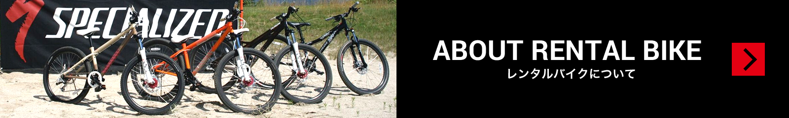 ABOUT RENTAL BIKE